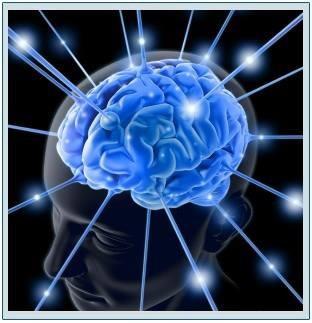 Aparelho estimulação magnética transcraniana